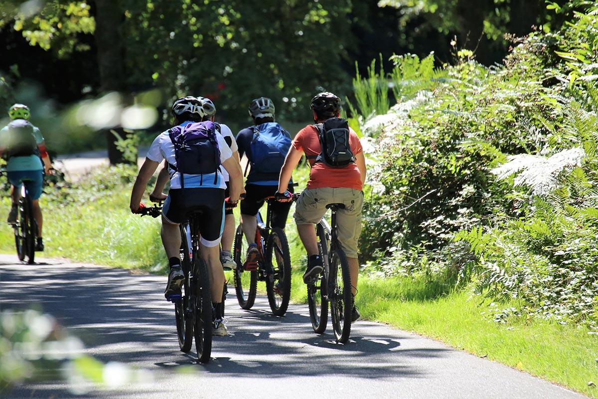 Choisissez notre service de location de vélos